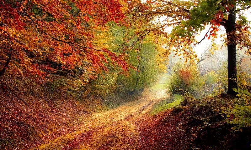 Quelques mots en Poitevin concernant les saisons et le temps.